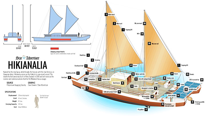 Hikianalia Diagram