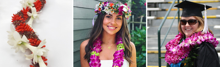 Hawaii Flower Lei